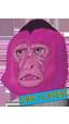 Pink Monkey Magazine